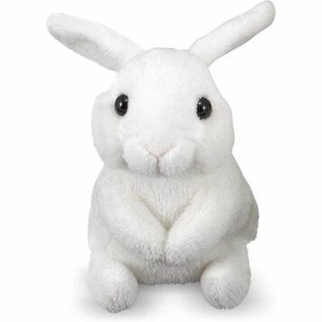 Baby Bunny Hops