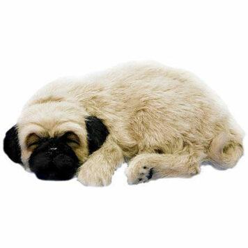 Perfect Petzzz XP91-09 Huggable Pug Puppy